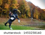 Stock photo man riding a black horse in park in autumn near lake horseman on horse galloping horse on two 1453258160
