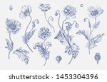 vintage vector botanical... | Shutterstock .eps vector #1453304396