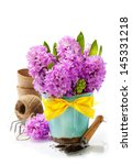 beautiful hyacinths in vase and ... | Shutterstock . vector #145331218