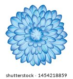blue dahlia flower with shiny... | Shutterstock .eps vector #1454218859