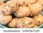 Young Tubers Of Potatoes Are...