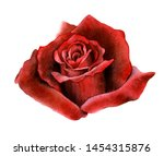 Picturesque Full Blown Dark Red ...
