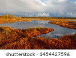 Dark blue autumn clouds passing the sunset lit peat deep red peat moss bog landscape with pools and sky reflections in Nigula bog, Pärnu county, Estonia.