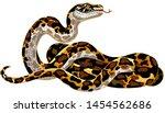 Cartoon Python Big Snake. Boa...