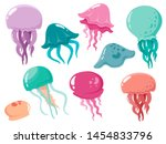 Set Of Sea Jellyfish. Vector...