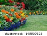 a close  ground level view of a ... | Shutterstock . vector #145500928