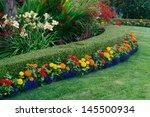 a beautiful garden display... | Shutterstock . vector #145500934