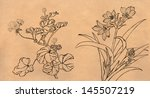 flower in spring  decoration ... | Shutterstock . vector #145507219