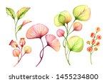 Watercolor Transparent Floral...