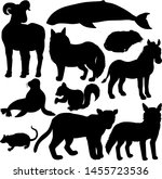 north american mammals animal...   Shutterstock .eps vector #1455723536