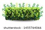 garden bush. green vegetation... | Shutterstock .eps vector #1455764066