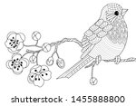 bird hand drawn in vintage... | Shutterstock .eps vector #1455888800