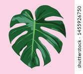 tropical leaf vector... | Shutterstock .eps vector #1455926750
