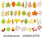 colorful autumn leaves.... | Shutterstock .eps vector #1456013570