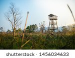 Wildlife Watchtower in Chitwan National Park, Nepal. Surrounded by elephant grass and other greenery.