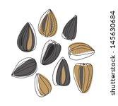 illustration of sunflower seeds | Shutterstock .eps vector #145630684