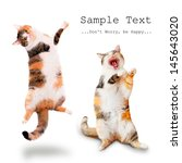 Stock photo two happy cats singing and dancing 145643020