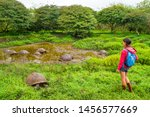 Stock photo galapagos giant tortoise on santa cruz island in galapagos islands ecotourism tourist looking at 1456577669