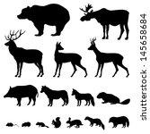 Animals Living In European...