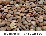 Dried Apricot Kernels Or...