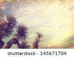 a joshua tree in california's... | Shutterstock . vector #145671704