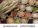 Small photo of Variety kinds of natural organic cereal food in sack bag with a bundle of dry wheat,for healthy or carbohydrate food and agricultural product concept,in dark tone