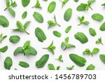 fresh green mint leaves on... | Shutterstock . vector #1456789703