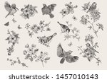 vintage illustration. blossom... | Shutterstock .eps vector #1457010143