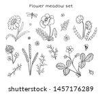 vector flowers set. naive... | Shutterstock .eps vector #1457176289
