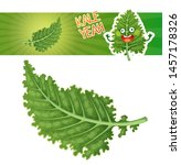 kale icon isolated on white... | Shutterstock .eps vector #1457178326