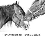 two horses nuzzling  original... | Shutterstock . vector #145721036