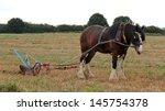 A Shire Horse Pulling A Vintag...