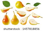 Pear Fruit Isolated. Set Of Re...