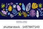 hand drawn tropical leaves....   Shutterstock .eps vector #1457847143