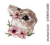 Stock photo beige powdery rabbit with pink poppy flowers cute children s illustration best t shirt print 1458051680