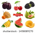 fresh fruits and berries. plum  ... | Shutterstock .eps vector #1458089270