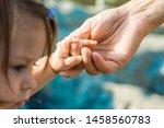 beautiful hands of parent and... | Shutterstock . vector #1458560783
