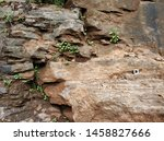 Sheeting joint in andesite igneous rock, Batu Templek Waterfall Bandung - Indonesia