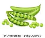 green peas vector realistic... | Shutterstock .eps vector #1459005989