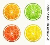 set of citrus fruits. orange ... | Shutterstock .eps vector #145904000