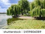 Beautiful View  Lake In The...