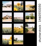 Photography Contact Sheet Of A...