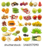 collection of fruit   Shutterstock . vector #146057090