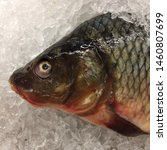 Macro Photo food fresh-frozen carp fish. Texture background river fish carp. Image of seafood fresh fish carp lying on ice