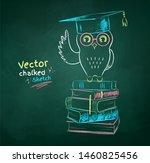 vector color chalk drawn ... | Shutterstock .eps vector #1460825456