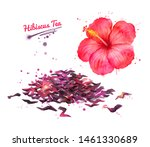 watercolor hand drawn... | Shutterstock . vector #1461330689