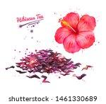 watercolor hand drawn... | Shutterstock . vector #1461330689
