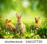 Rabbits. Beauty Art Design Of...