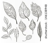 vector set of leaves ... | Shutterstock .eps vector #146138948