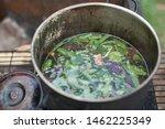 Brewing Sacred Ayahuasca...